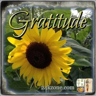 Gratitude_2015