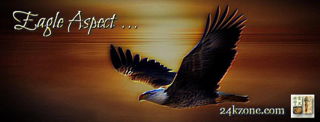 Eagle Aspect
