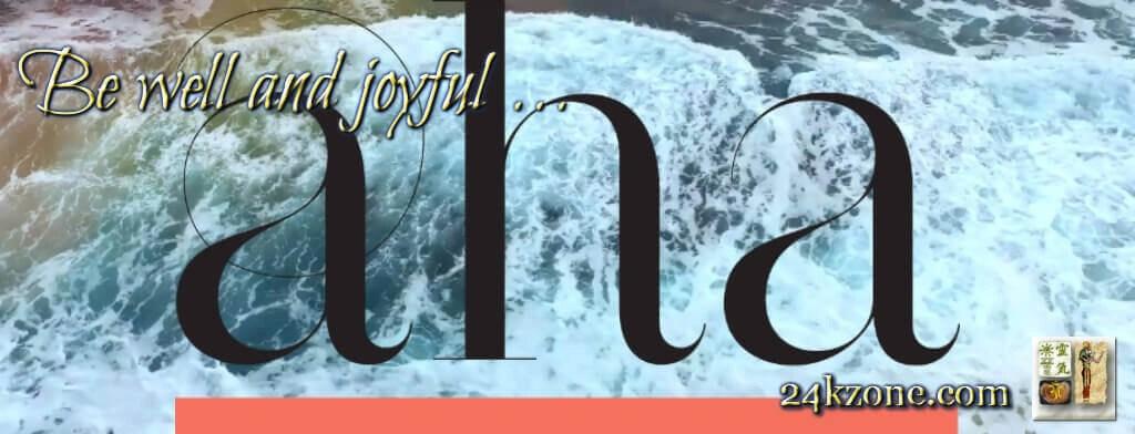 AHA cover