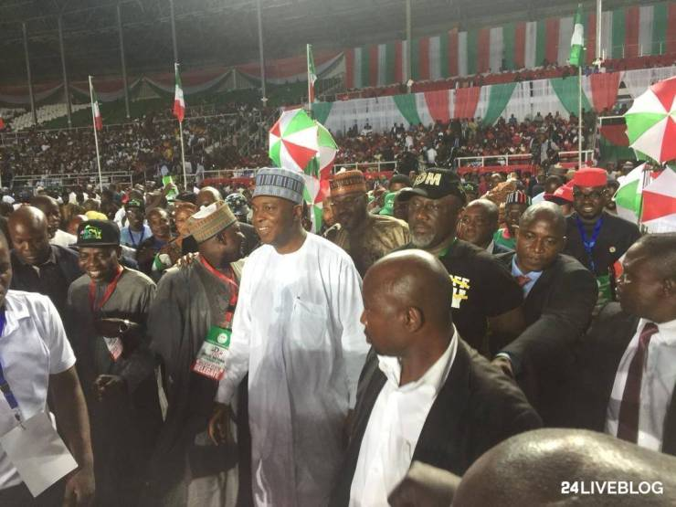 PDP president primary election