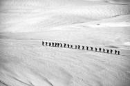 Solidarité des hikers