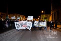 PEGIDA and Identitarian front transparents.