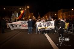 PEGIDA & Identitarian front banner.