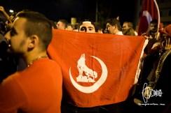 Turkish 'Grey Wolve' flag.