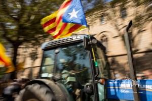 TRAMMER referendum traktors 20170929 25 - TRAMMER_referendum-traktors-20170929_25