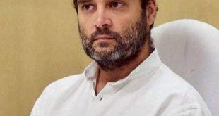 राहुल गांधी कहते हैं 'कोविद -19 हार्वर्ड में असफलता का केस स्टडी होगा';  जेपी नड्डा हिट्स बैक