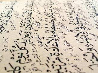 arabisk koran asyl flygtning