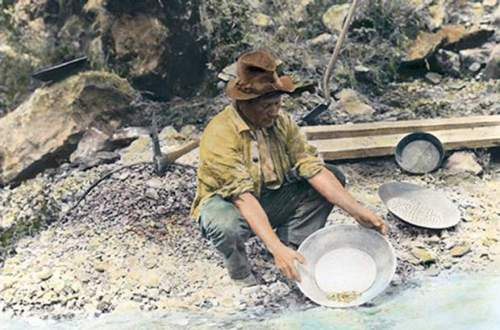 Каліфорнійська золота лихоманка