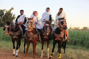 Wer glaubt, vier Hufe hätten in der Wüste nur Kamele, der irrt. Die bunt geschmückten Pferde sind der ganze Stolz ihrer Reiter.