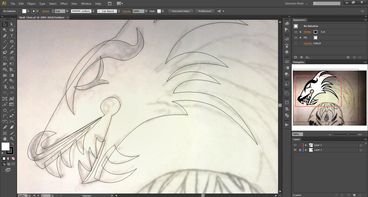 Illustrator dragon drawing