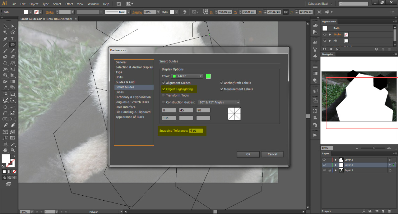 Smart Guides Preferences in Illustrator CS6