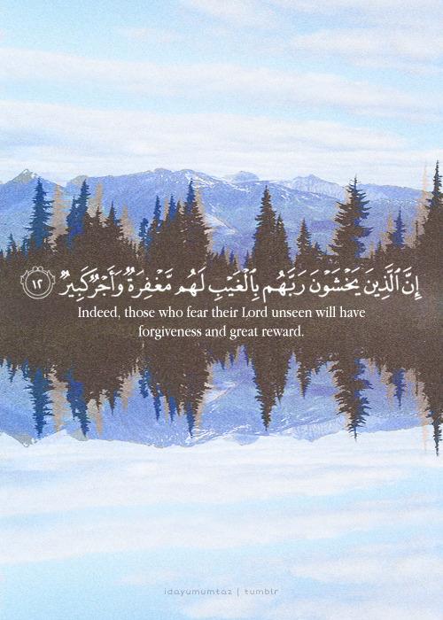 Surah Al-Mulk Verse 12