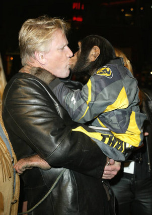 Busey4