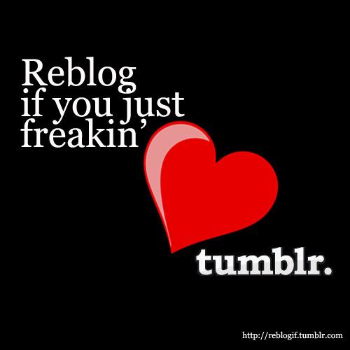 reblog tumblr