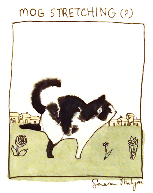mog the cat illustration serena malyon art watercolour