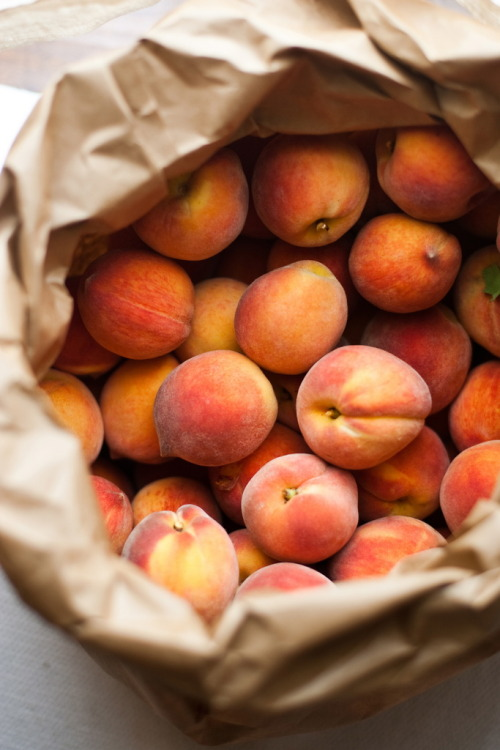 a peck of peaches by (caroline la rousse) | Website