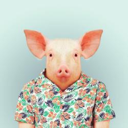 PIG por Yago Partal para ZOO RETRATOS