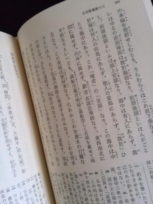 tumblr_mofgp26Yto1qaorv4o1_500.jpg