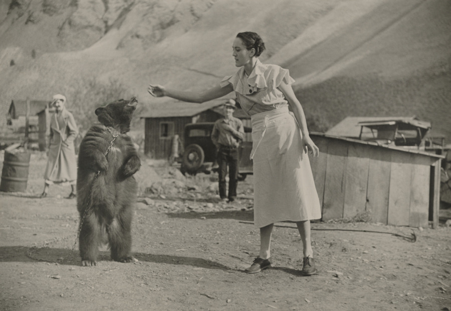 A girl feeds her pet bear in Riggins, Idaho.Photograph by Maynard Owen Williams, National Geographic