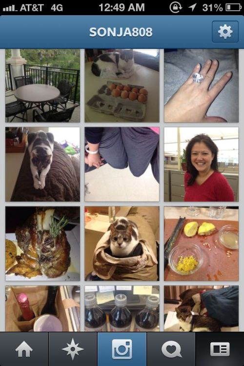 My friend just taught me how to tag a person in Instagram pics and I was so excited to try it out on all my old pics… until I realized that I still only take pictures of my cats, food, and myself.