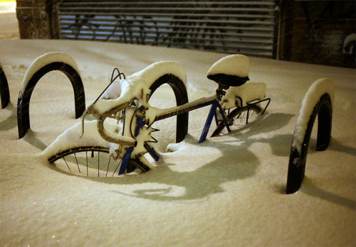 snow12 (by nycscout)