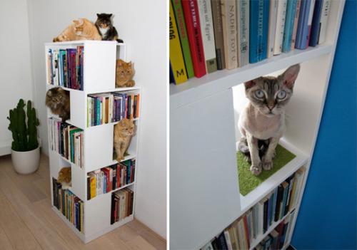 Дом для кошек - книжный шкаф
