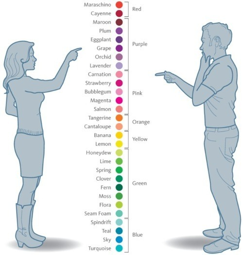 Womens idea of colour VS Mens