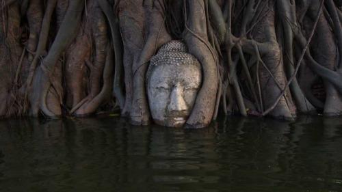 Drowning Buddha