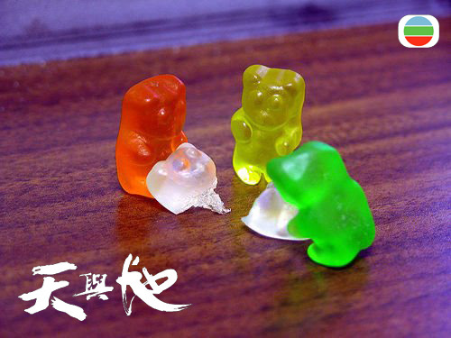 gummi bear cannibalism