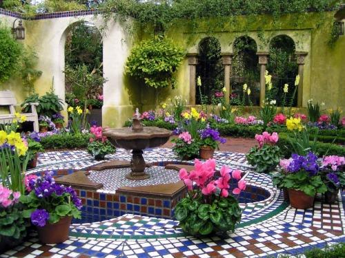 dyingofcute:exclusive garden