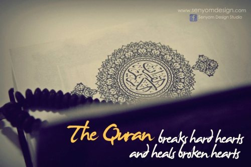 islamic-quotes:The QuranSubmitted byctamyna