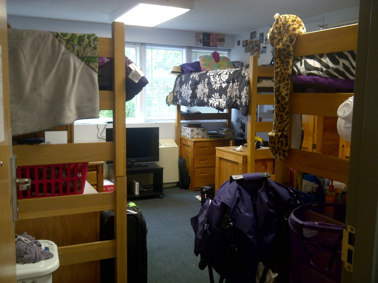 Sacred Heart University Dorm Rooms