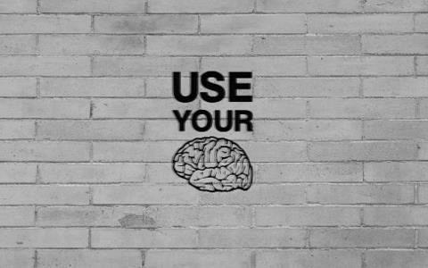 Principle 2 Utilise Your Creative Brain