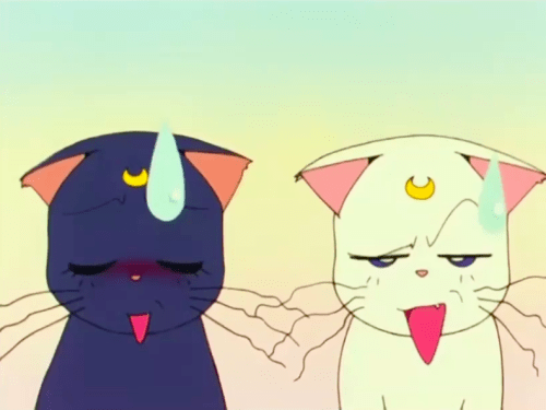 Sailor Moon Cat Luna Artemis Usagi Crazt Cat Lady Tag Loloable Stuff Blog