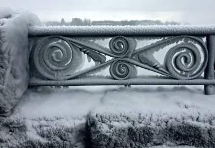 Frozen Canadian Mist