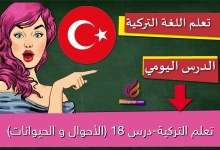 تعلم التركية-درس 18 (الأحوال و الحيوانات)