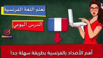 أهم الأضداد بالفرنسية بطريقة سهلة جداً