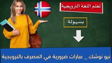 نيو نوشك _ عبارات ضرورية في المصرف بالنرويجية