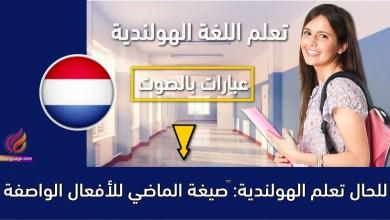 تعلم الهولندية: صيغة الماضي للأفعال الواصفة للحال