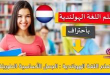 تعلم اللغة الهولندية : الجمل الأساسية الطويلة