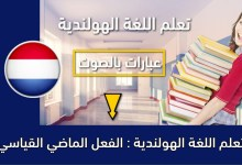 تعلم اللغة الهولندية : الفعل الماضي القياسي