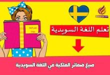 صيغ ضمائر الملكية في اللغة السويدية