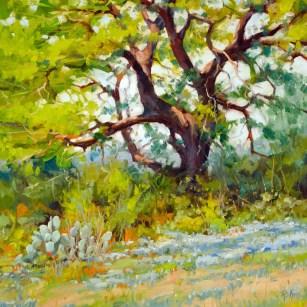 Rohm_Robert_Twisted Oak 20x20 oil