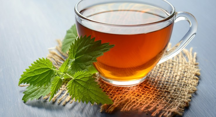 fat burning teas, weight loss teas, lose belly fat