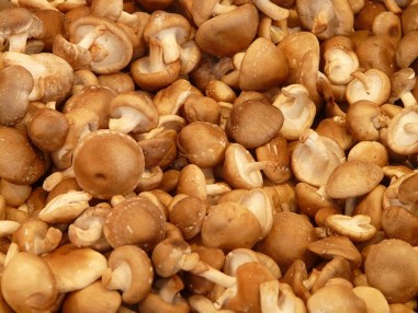 shiitake, mushrooms, mushrooms boost immune system, immune health