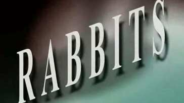 Rabbits short film title