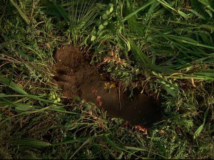 1-8_footprint
