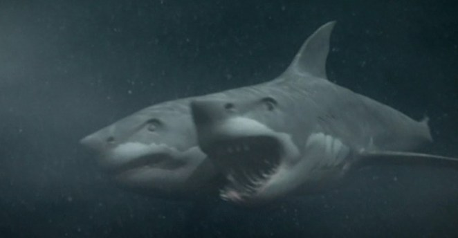 A two headed shark, under water
