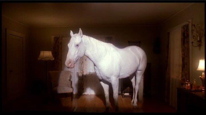 White Horse Twin Peaks