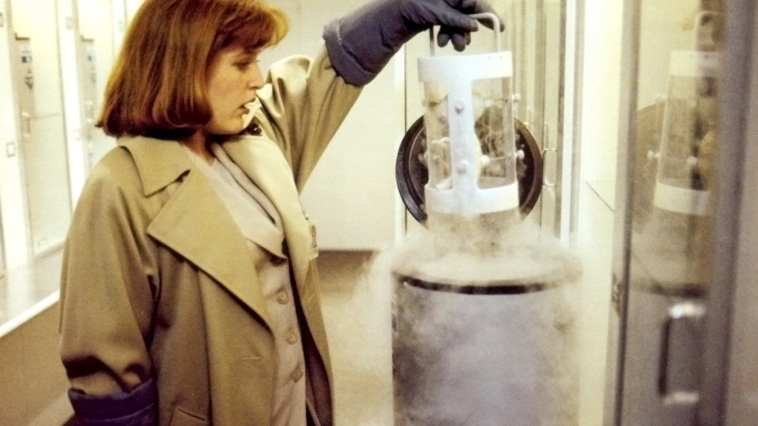 A classic moment in The X-Files episode The Erlenmeyer Flask is when Scully discovers the alien fetus.